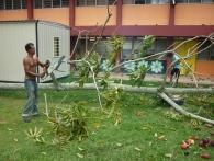 Garden Work 22